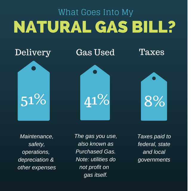 Natural Gas Bill Infographic